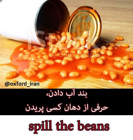 pill-the-beans