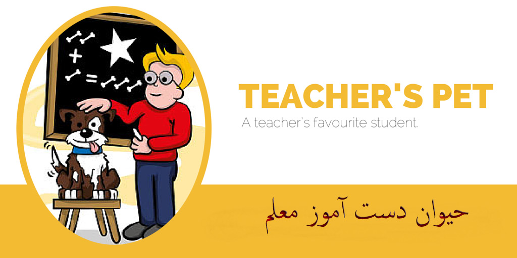 teachers-pet-english-idiom